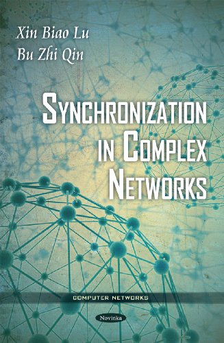 Synchronization in Complex Networks
