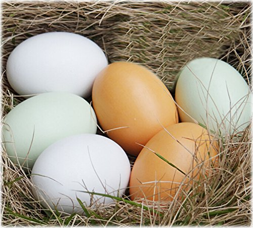 Miraclekoo Wooden Faux Fake Eggs,6 Piece (Wood Chicken Eggs compare prices)