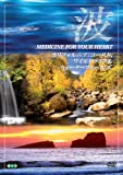 波 ~Medicine For Your Heart~ California: Co...[DVD]