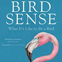 Bird Sense: What It's Like to Be a Bird (       UNABRIDGED) by Tim Birkhead Narrated by Robin Sachs