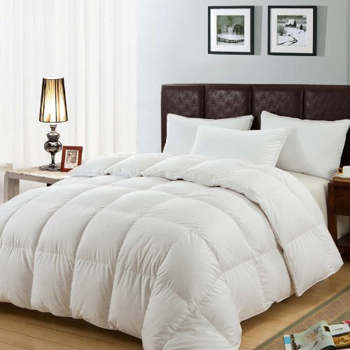 Cushy - NEW LUXURY DUCK FEATHER & DOWN DUVET - ALL SIZES - 13.5 TOG (Double - 200cm x 200cm)