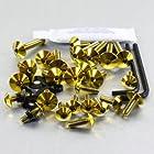 Titanium Fairing Kit SV650 Gold