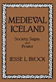 img - for Medieval Iceland: Society, Sagas, and Power book / textbook / text book