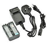 DSTE NP-FM500H Rechargeable Li-ion Battery + Charger DC01U for Sony Alpha SLT-A57, A58, A65, A65V, A77, A77V, A99, CLM-V55, DSLR-A100, A200, A300, A350, A450, A500, A550, A560, A580, A700, A850, A900 Digital Cameras