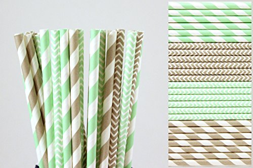 Mint Green and Grey Paper Straw Mixk - Striped and Chevron (100)