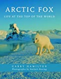 Arctic Fox: Life at the Top of the World