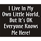I live in my own little world but it's ok everyone knows me here Funny Joke Novelty Car Bumper Sticker 7.5x5.5""