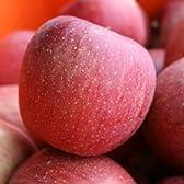 ふじ Aランク (贈答用) 約5kg 12玉~18玉 長野県産りんご 『糖度12度以上』 光センサー選果