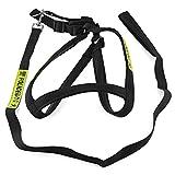Adjustable 2.5cm Width Braided Nylon Police Dog Large Dog Leash Harness