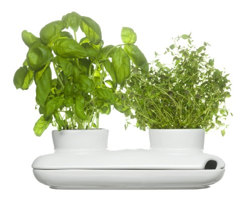 Sagaform 5015859 Stoneware Herb Pot Duo, White