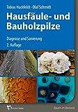 Hausfäule- und Bauholzpilze: Diagnose und Sanierung