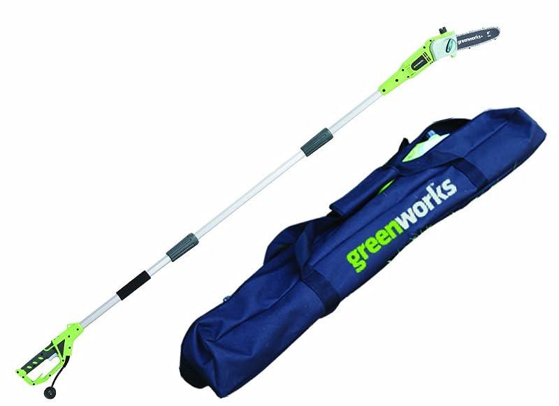 GreenWorks 20202 6.5 Amp 8-Inch Corded Pole Saw w/Case via Amazon