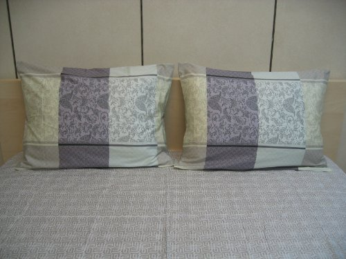 Dada Bedding Fsfsq8222 4-Piece Paisley Cotton Sheet Set, Queen