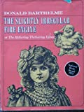 The Slightly Irregular Fire Engine; or The Hithering Thithering Djinn (0374370389) by Barthelme, Donald