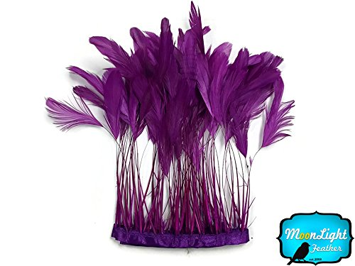 1 Dozen - PURPLE Stripped Coque Tail Feathers