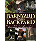 Barnyard in Your Backyard: A Beginner's Guide to Raising Chickens, Ducks, Geese, Rabbits, Goats, Sheep, and Cattle ~ Gail Damerow