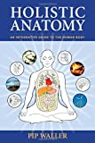 img - for Holistic Anatomy: An Integrative Guide to the Human Body book / textbook / text book