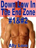 img - for Down Low In The End Zone #1 & #2 Complete - M/M Gay Straight Seduction Menage XXX Erotica book / textbook / text book
