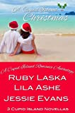 A Cupid Island Christmas (The Cupid Island Series Book 1)