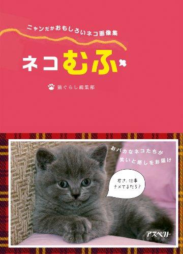 ネコむふ: 猫のオモシロ画像集