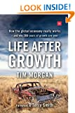 Life After Growth: How the global economy really works - and why 200 years of growth are over