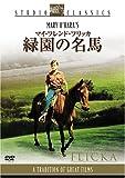 マイ・フレンド・フリッカ 緑園の名馬 [DVD]