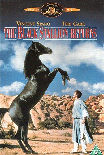 Il Ritorno Di Black Stallion