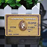 SUNNY-MARKET Free shipping Hot-selling wholesale american express card 2-32GB USB 2.0 Flash Memory Stick Pen Drive U Disk LU514,2GB,2GB