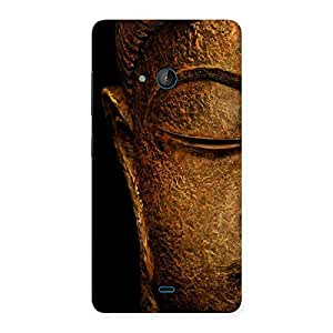 Lord Buddha Multicolor Back Case Cover for Lumia 540