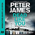 Dead Like You: Roy Grace, Book 6 Audiobook by Peter James Narrated by David Bauckham