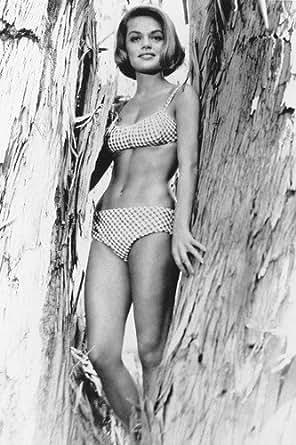 Dyan Cannon Bikini B&W Poster Posing In Tree 60's at