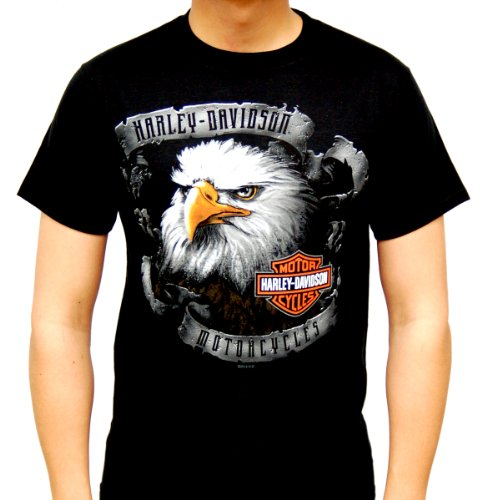 Harley-Davidson Mens Banner Glare Eagle Black Short Sleeve T-Shirt (Large)