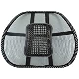 DG SPORTS Lumbar Support Cushion Seat with Massage Bead Pain Relief Travel Office Chair