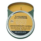 Tangerine & Lavender Aromatherapy Candle- Made with 100% pure essential oils - 3oz tin