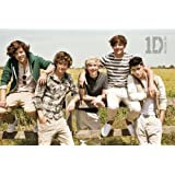 Music - Pop Posters: One Direction - Summer - 23.8x35.7 inches