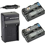 DSTE® 2x NP-FM500H Battery + DC01 Travel and Car Charger Adapter for Sony Alpha SLT A77V A77II A350 A450 A500 A550 A700 A850 A900 CLM-V55 DSLR Camera as NP-FM500