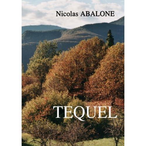 Image: TEQUEL: Mene TEQUEL Parsin (French Edition): Nicolas Abalone