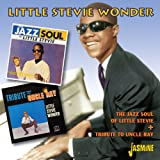 The Jazz Soul Of Little Stevie + Tribute To Uncle Ray Little Stevie Wonder
