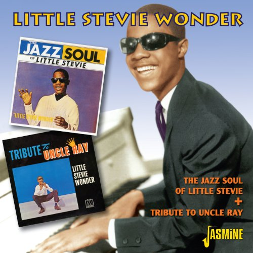 Stevie Wonder - A Tribute To Uncle Ray - Zortam Music
