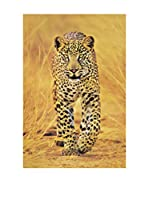 ArtopWeb Panel Decorativo Cheetah The Big Cat
