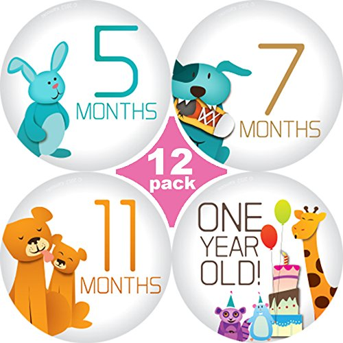 Huge Sale! Stick'Nsnap(TM) milestones monthly growth stickers for baby boy or girl. 3.25'' inch diameter sticker. (Happy Animals - Gray 12 Pack)