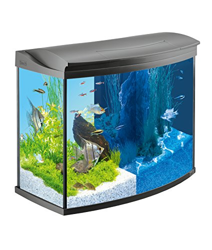 tetra aquaart evolution line 100 130 liter aquarium. Black Bedroom Furniture Sets. Home Design Ideas