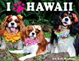 Hawaiian 16 Month Trade Calendar I Paw Hawaii Dogs 2014