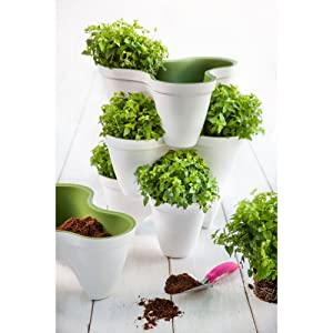 1 Single Keter Ivy Planter for Stackable System