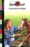 echange, troc Bonnie Bryant - Un poulain en danger