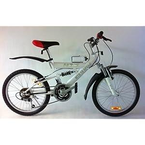 20 zoll mountainbike fahrrad wei test. Black Bedroom Furniture Sets. Home Design Ideas