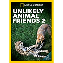 Unlikely Animal Friends 2