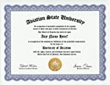 Aviation Lover Aviator Degree: Custom Gag Diploma Doctorate Certificate (Funny Customized Joke Gift - Novelty Item)