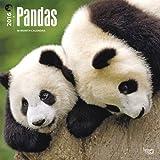 Pandas 2016 Wall