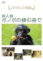 類人猿ボノボの棲む森で [DVD]